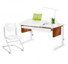Комплект Астек Лидер + стул SK2. Большой лоток в подарок!